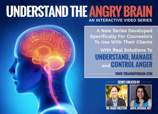 the angry brain - click here